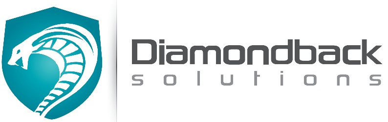Diamondback Solutions Inc